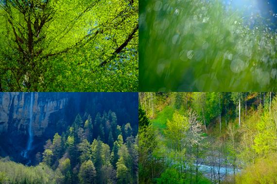 Kientalerhof Newsletter Collage